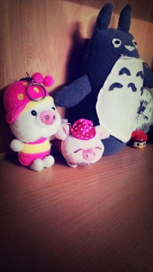 Toy Teddy Pig In The City  Cute