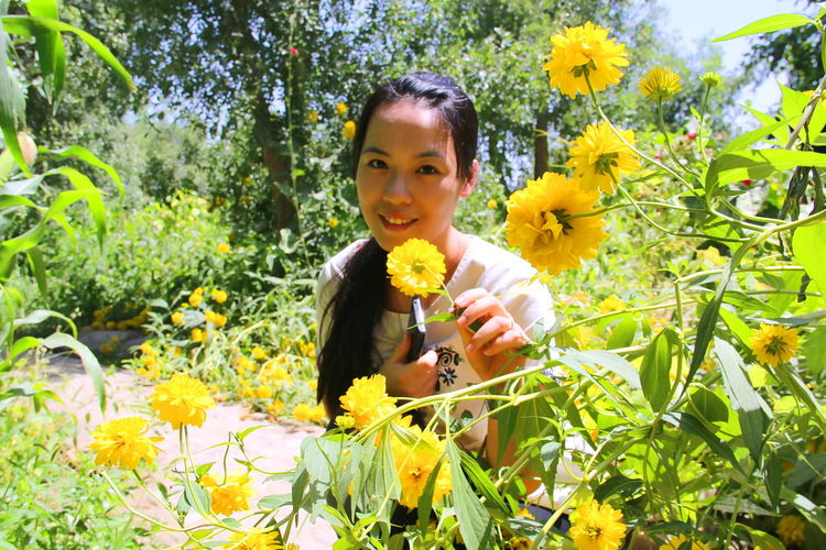 Beautiful flowers Beauty In Nature Green Color Happiness Lifestyles Nature Plant Traveling Yellow
