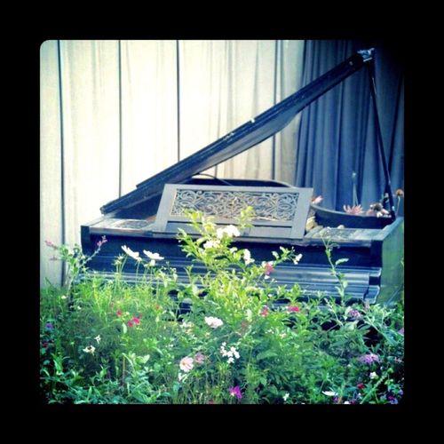 Piano bucolique. Piano Flowers Garden Festival Des Jardins De Chaumont
