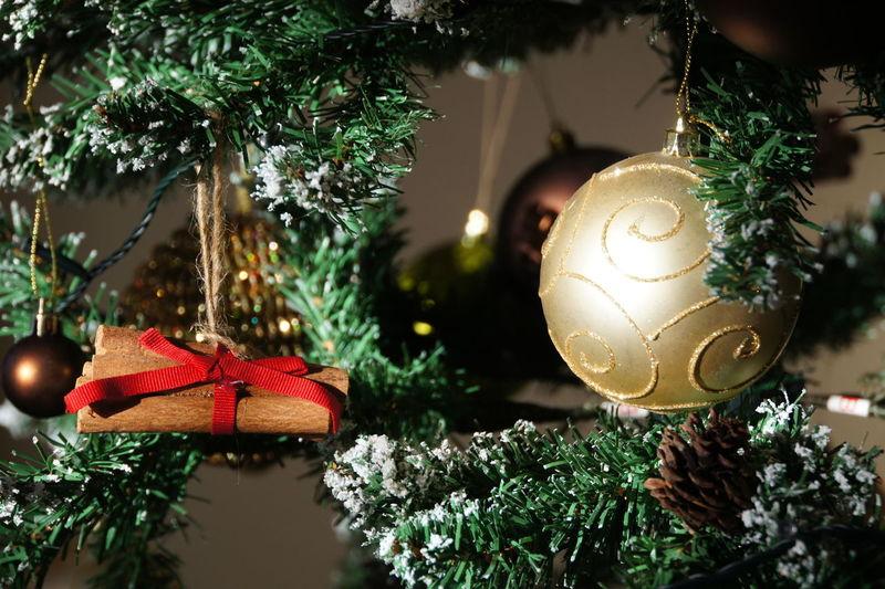 Celebration Christmas Christmas Decoration Christmas Lights Christmas Tree Decoration