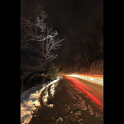 Lebanese#lebanon#arez#snowing#night#rainjng#light#trailing#long#exposure#cedars#tree#forest