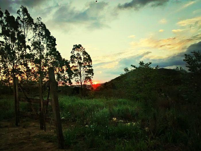 Sun Sunset Woods Sky And Clouds Guarapari