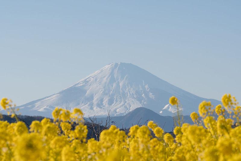 Amazing Amazing Nature Mt.Fuji Nature Nature Photography なの 富士山 絶景 風景