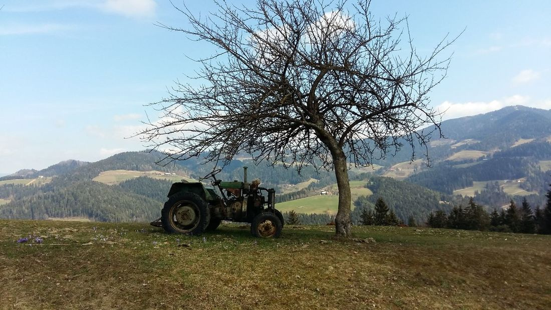 Love Nature Beautiful Nature Tractor Under The Tree Day Out Green Grass Under The Sun Farm Life Farmland