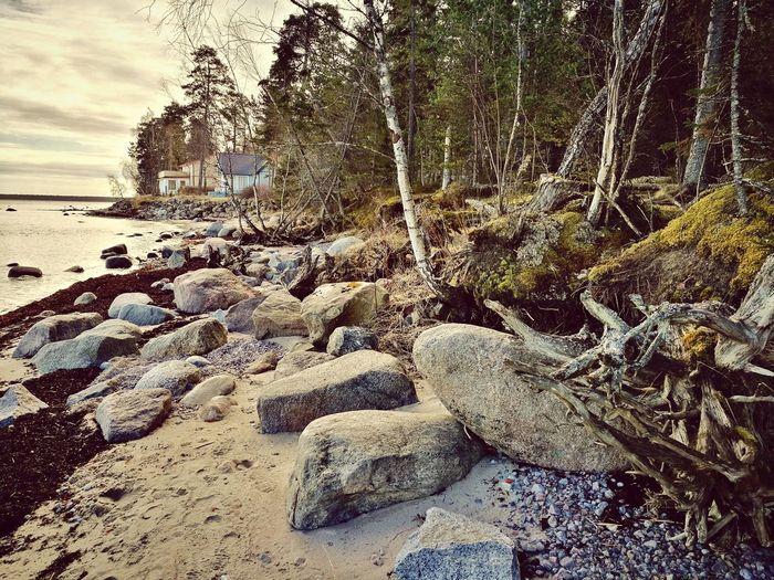 Käsmu, Sea, Beach, Rocks, Spring First Eyeem Photo
