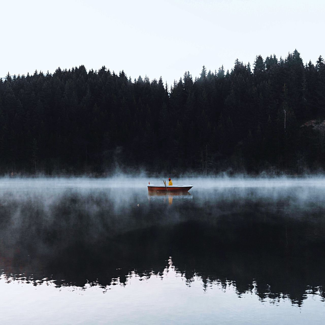 Man Boating On Lake Against Trees During Foggy Weather