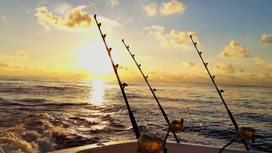 Gulf Of Mexico In The Gulf Of Mexico Sportfishing Marlin Fishing Gulf Life Enjoying The Sunrise Sunrise Saltlife Saltwater Bluewaters Samsung Galaxy S5
