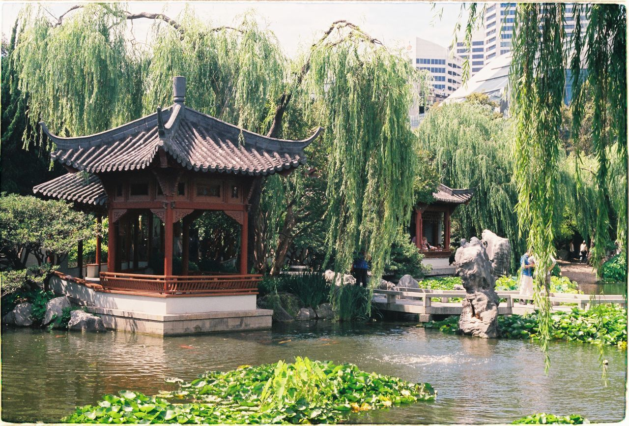 plant, architecture, water, built structure, tree, nature, building exterior, pond, day, waterfront, building, no people, growth, park, park - man made space, garden, outdoors, formal garden, flowing water