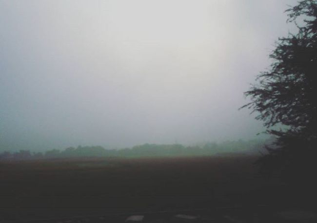 December is here so is the foggy weather... December Kolkata Morningjog