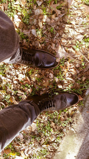 What will today bring? Me Dapper One Person Human Body Part Sunlight Lifestyles High Angle View Human Leg Leisure Activity Day Outdoors Feet Nature People Eye4photography  EyeEm Gallery Boots Winter Wingtips Check This Out