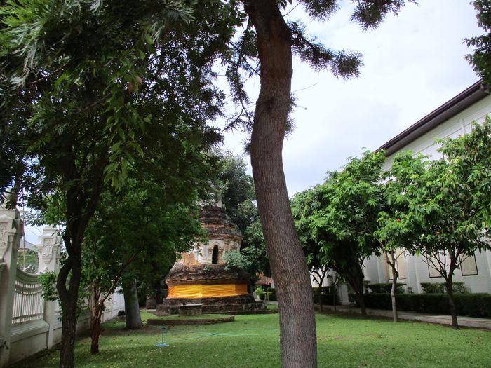 Old Pagoda in