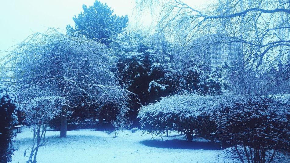 More snow ! Somewhere In Paris