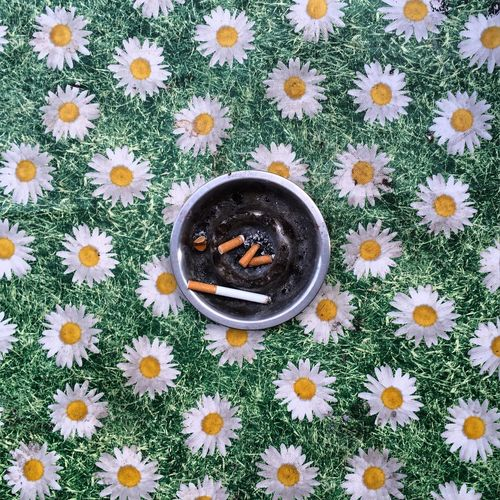Ashtray On Floral Pattern Tablecloth