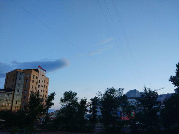 Sky No People Tree Day EyeEmNewHere Buryatia, Russia, Ulan-Ude