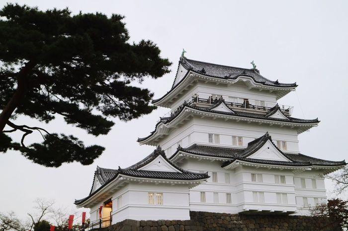 Odawara Castle / Japan Castle Cloud - Sky