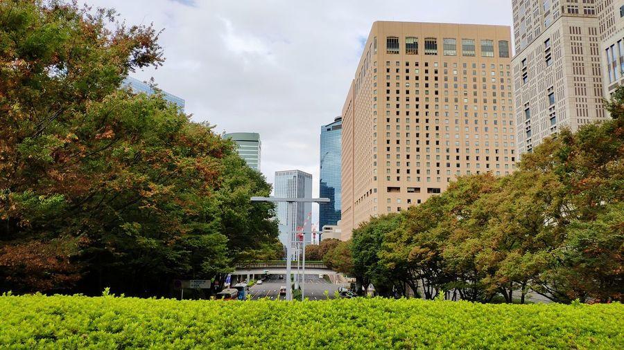 Shinjuku/ tokyo near the government building