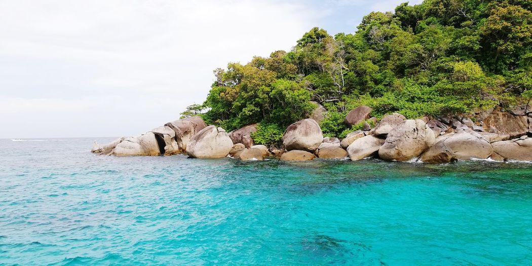 Similan Island, Thailand Similan Paradise Andaman Sea Andaman Thailand Snorkeling EyeEm Selects Water Tree Sea Beach Blue Summer Rock - Object Sand Idyllic Sky Island Indian Ocean Tropical Tree Coast Rocky Coastline