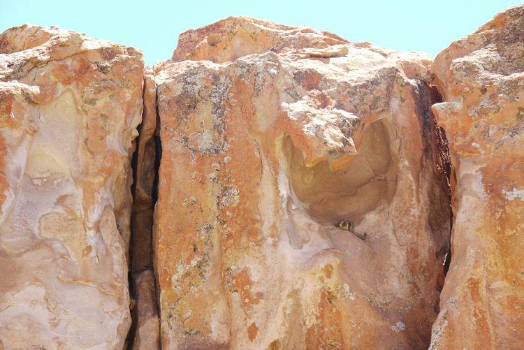 Chinchilla Black Lagoon Bolivia Rocks Cliffs