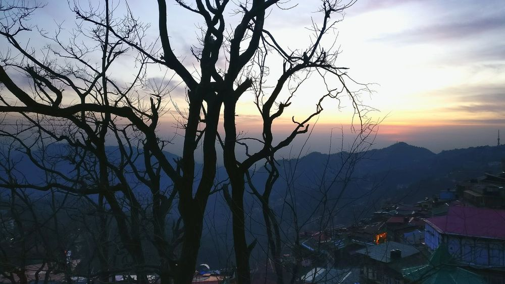 awesome view Shimla India Mobile Photography Perspective Shadow Check This Out No People Eyeem Best Picks. Eyeem Trending Outdoor Photography Cold Relaxing Sky Front View Nature Beauty Outdoors Hillstation Taking Photos Sunlight Trees Shadows