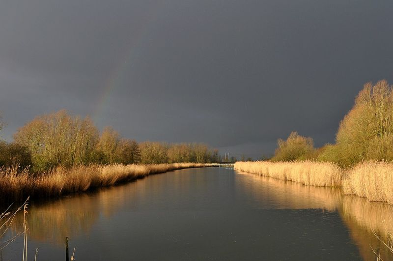 Rainbow, sunshine & dark skies in one image Amazing View Rainbow Dark Sky With Rainbow Sunshine Nature On Your Doorstep Reflected Glory Pure Photography Water Reflections Reed Nature Nature At Its Best Taking Photos Check This Out Pure Our Best Pics EyeEm Best Shots Naturescape Rainbow Sky Showcase: February Reflections Capture The Moment The Purist (no Edit, No Filter) Right Place Right Time No People EyeEm Nature Lover