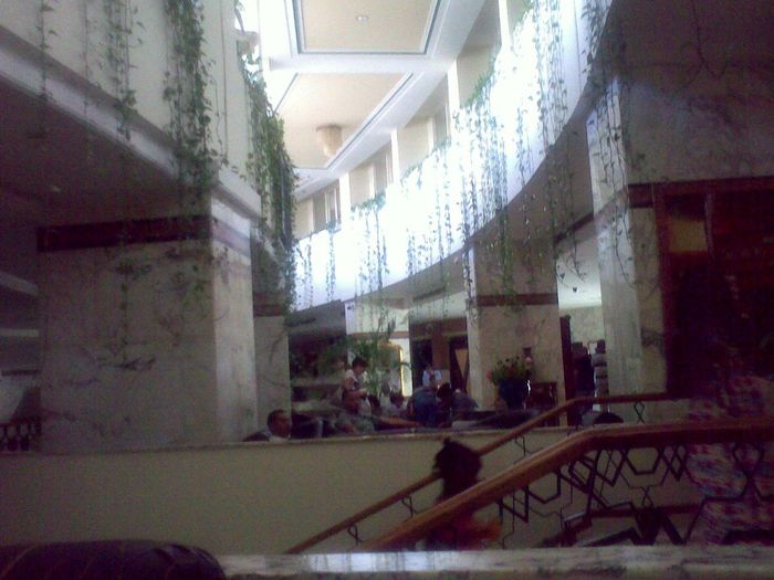 Vines On Walls Hotel Foyer Marble Meeting Friends Reception Curve Bar Seating Area Grand Staircase