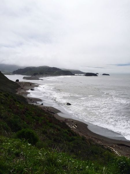 Sea Nature Beauty In Nature Water Tranquility Scenics Tranquil Scene No People Beach Sky Outdoors Day Horizon Over Water Grass Landscape Wave Driftwood Pacific Norcal