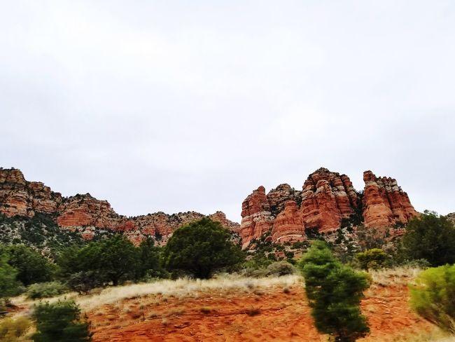 The Land of Red Rocks Sedona Rockporn Arizona Paintedrock Desert Redrocks Travelarizona Rocky Desert No People Day Sky Tree Nature