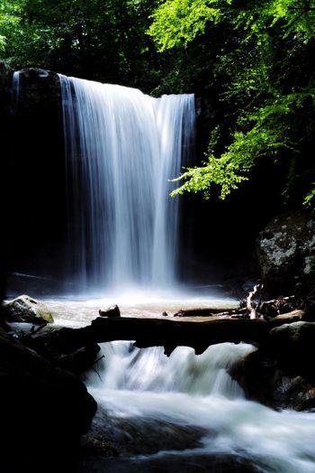 The Great Outdoors - 2015 EyeEm Awards Ohiopyle Waterfall Nature #cucumber Falls Enjoying Life