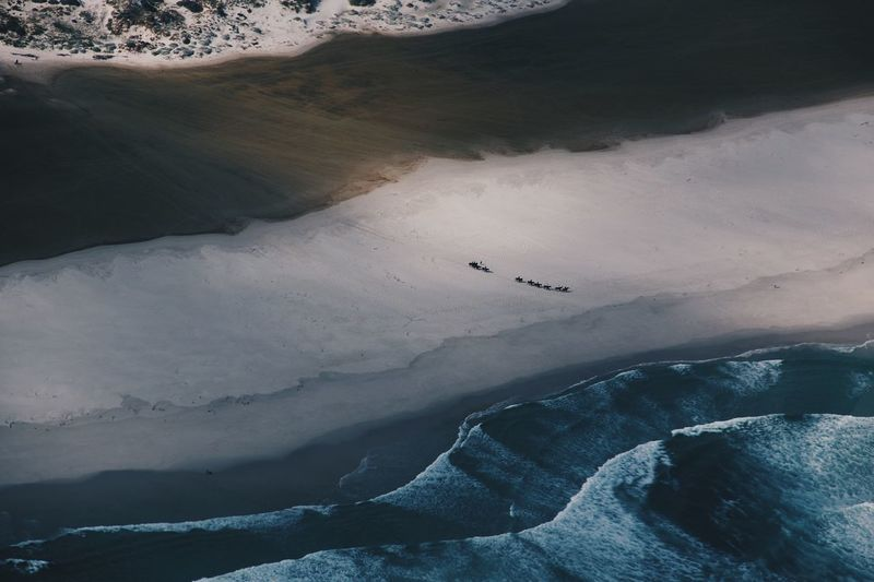 helicopter ride looking over long beach Sea Sand Horse Beach Scenics - Nature Animal Wildlife Animals In The Wild Vertebrate Landscape Animal Themes EyeEmNewHere Beauty In Nature Water Environment High Angle View No People Animal Flying