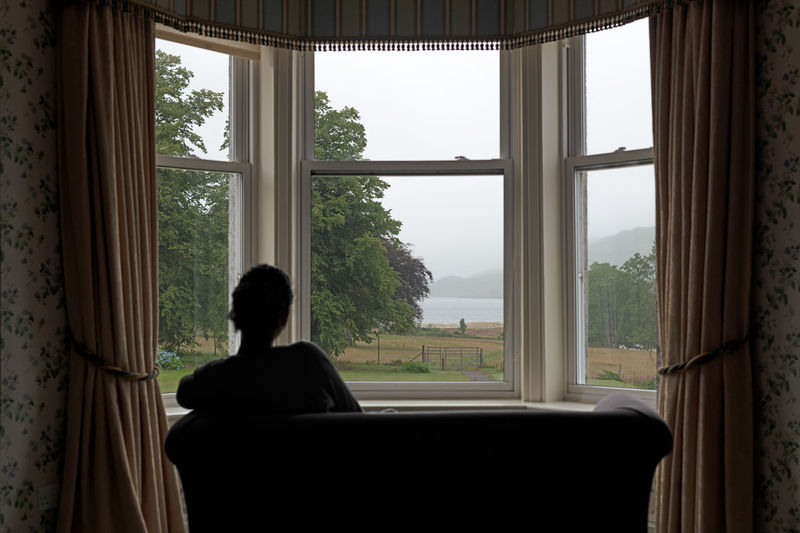 Window Rear
