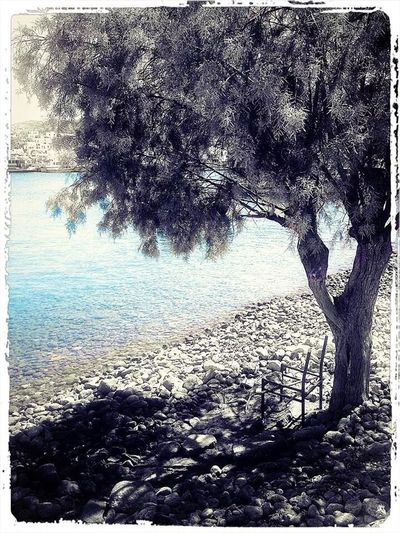 Enjoying Life Point Of View Chair Sea Sanblas