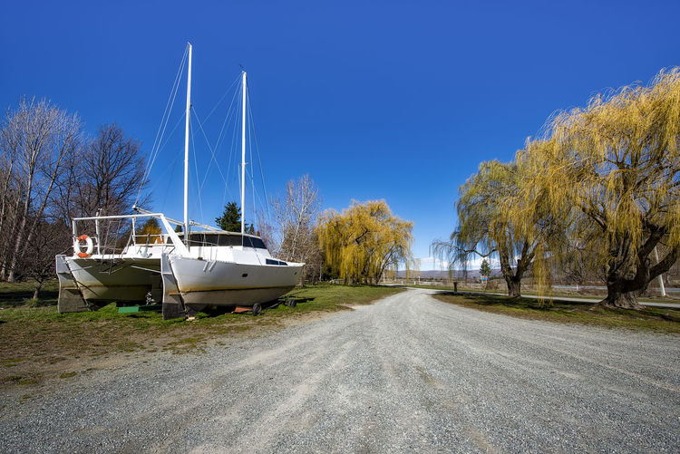 Boats moored on trees against clear blue sky