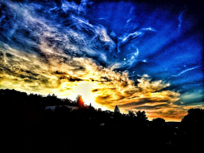 Sunset at Mainz Sun Sunset Summer EyeEm Selects Cloudy Tree Sunset Blue Silhouette Dramatic Sky Sky Cloud - Sky Architecture Atmospheric Mood Romantic Sky Moody Sky Outline Cloud Cloudscape