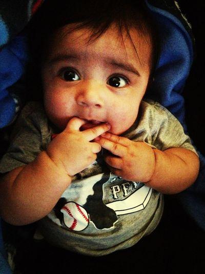 My Chubby Wubby Max ❤☺