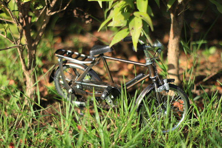 Aceh, Indonesia Plant Land Field Nature Grass Green Color Day Selective Focus Growth No People Outdoors Plant Part Leaf Close-up Metal Transportation Focus On Foreground Land Vehicle Mode Of Transportation Obsolete Wheel