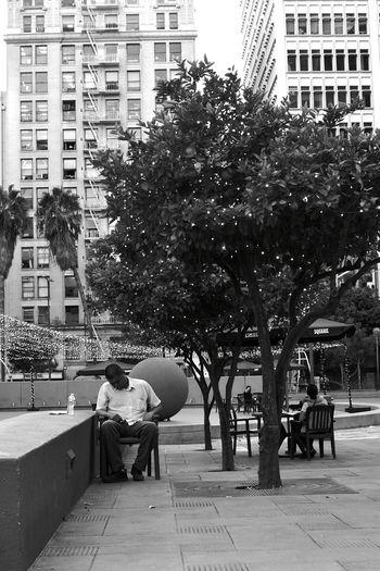 City Los Angeles Life DowntownLA Walking Around Taking Photos Streetphotography Streetphoto Streetphoto_bw Los Angeles Downtown Best EyeEm Shot BestofEyeEm Street Photography Lifestyles Tree EyeEm Selects Poeple