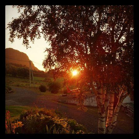Eide På Nordmøre Silnesmyra Solnedgång