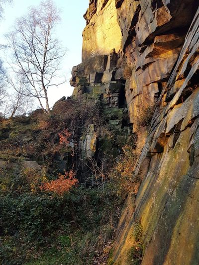 Nature Outdoors Rock - Object Day Beauty In Nature Low Angle View No People Sky Growth Tree Autumn Hell Hole Climbing Quarry Hell Hole Rocks Heptonstall Textures And Surfaces Light And Shadow Rocks Stone Tree Rock Face Landscape Scenics Travel Destinations