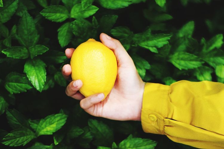 Cropped image of hand holding yellow fruit