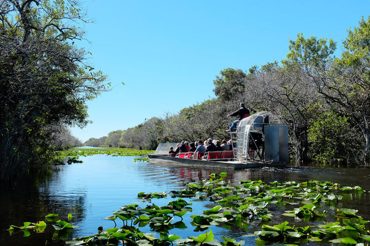 Airboat tour on Florida Everglades Florida Everglades Tourist Air Boat Airboat Airboat Ride Airboat Rides On The Swamps Beauty In Nature Clear Sky Florida Growth Large Group Of People Leisure Activity Nature Nautical Vessel Outdoors People Real People River Scenics Sky Tour Tourism Tranquility Tree Water