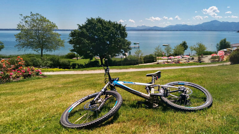 Beauty In Nature Bicycle Blue Chiemsee Day Flower Ghost Grass Nature No People Outdoors Sky Tree