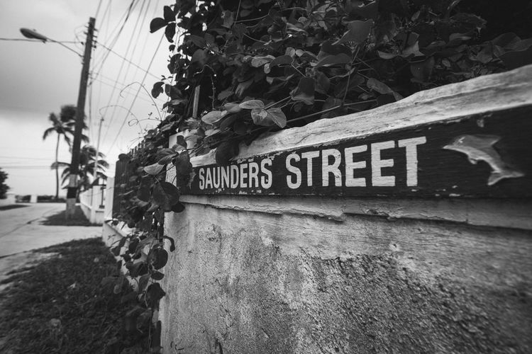 Saunders Street Alice Town Animal Themes Bimini Black And White Photography Close-up Communication Day Dolphin Mammal Nature No People One Animal Outdoors Photographyisthemuse Saunders Street Text The Bahamas Tree Wooden Post