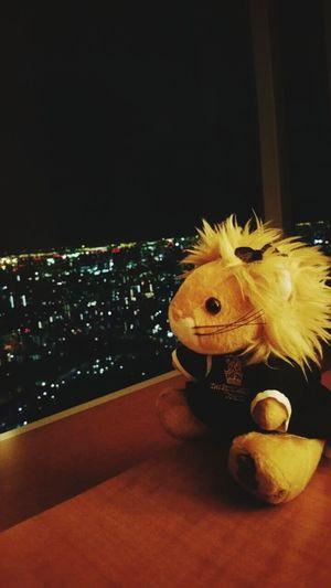 Hotel View Hotel Room Ritz-Carlton Hotel Tokyo,Japan