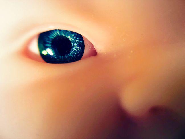 Azul Ojo Muñeca Dark Photography Terror Doll Eyes Baby Eye Blue Eyes Fear Sensory Perception Human Face Iris - Eye One Person Extreme Close-up Macro Women