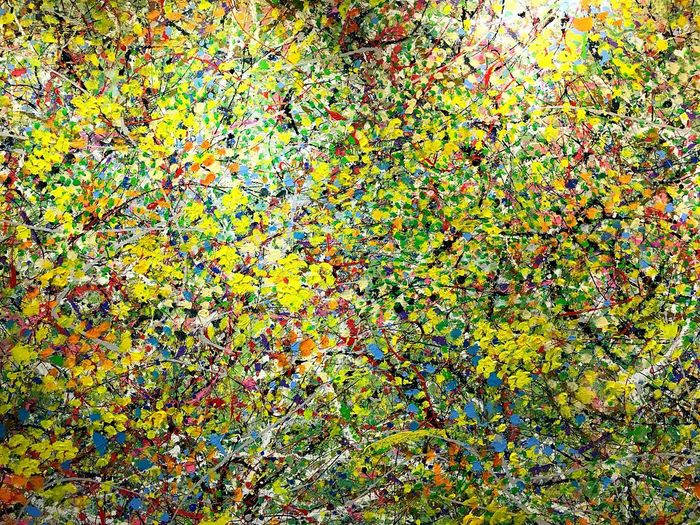 taiwan art Full Frame Backgrounds Multi Colored Pattern No People Day High Angle View Nature Textured  Close-up Green Color Yellow Design Plant Art And Craft Natural Pattern