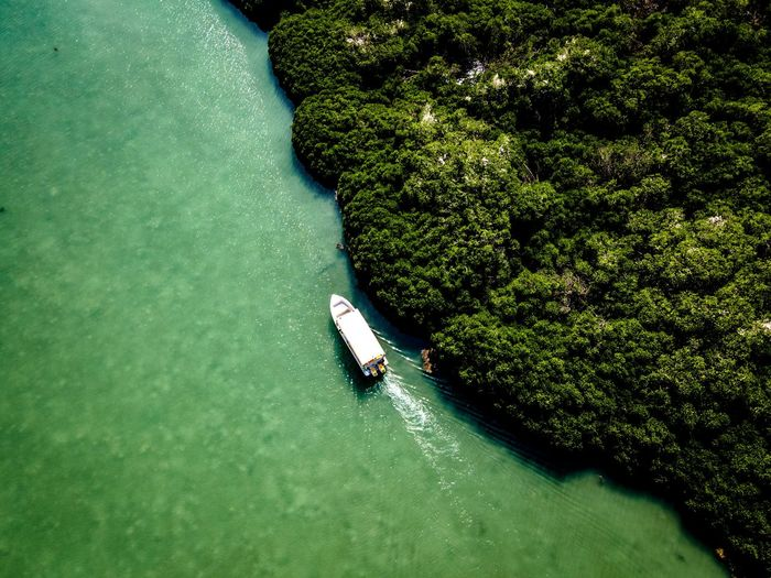 High angle view of person by sea