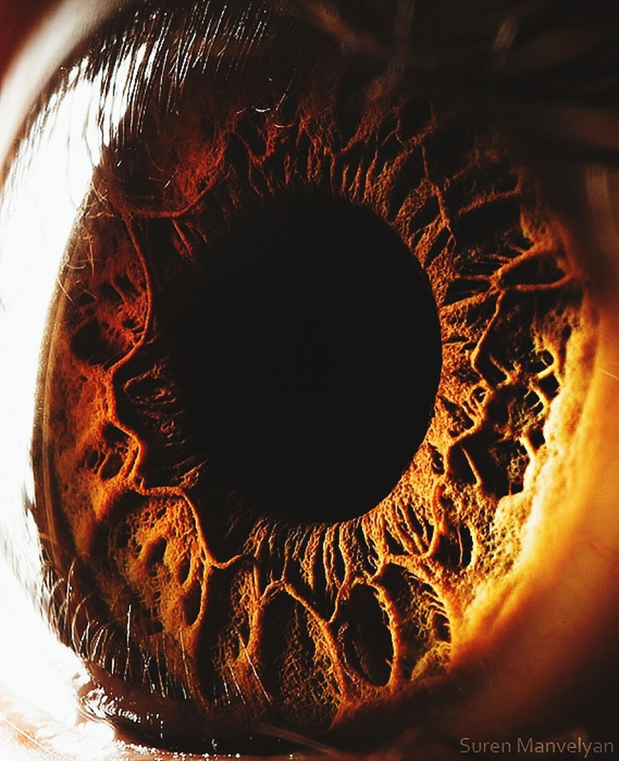 close-up, indoors, part of, lifestyles, human hair, human eye, person, human skin, eyesight, unrecognizable person, leisure activity, sensory perception, cropped, headshot, human face, studio shot