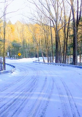 Snow country road tree day nature No People Outdoors Cold Temperature Beauty In Nature Scenic Drive winter