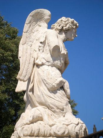 Statue Statue In The City Avignon City Avignon, France