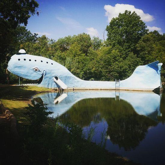 Abandoned Ark Blue Whale Catoosa, Oklahoma Day Mushroom Mushrooms Outdoors